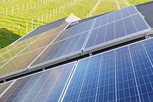 solar panels on roof in vineyard setting
