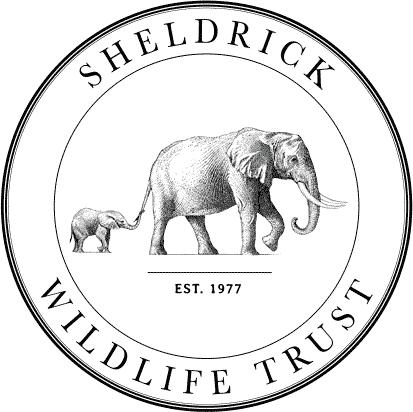 sheldrick wildlife trust logo