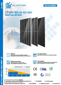 Leapton Solar Power brochure front cover